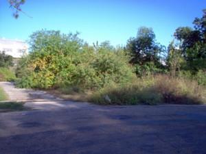 slab-street-view